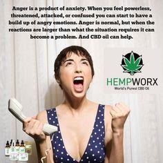 Understanding Anxiety And Anxiety Attacks Anxiety Causes, Ayurvedic Herbs, Understanding Anxiety, Cbd Hemp Oil, Drug Test, Alternative Health, The Balm
