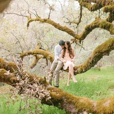 SO magical! This dreamy session takes place in Central California and is filled with romantic images! A real life version of Twilight!