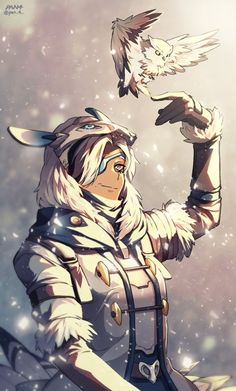 Overwatch Snow Owl Ana