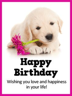 Send Free Sweet Puppy Happy Birthday Card To Loved Ones On Greeting Cards By Davia Its 100 And You Also Can Use Your Own Customized