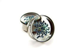 Blue Queen Anne's Lace Embedded Flower Plugs gauges - 5/8, 3/4, 7/8, 1 inch on Wanelo