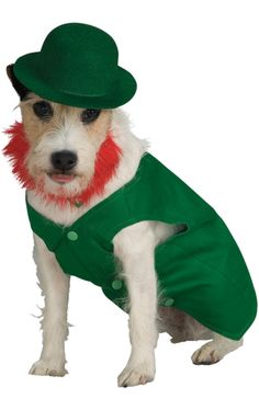 Leprechaun Dog Costume Raises £0.45 for charity when you shop with Give as you Live