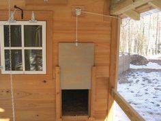 Chicken Coop Door Opener Homemade