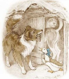 From the Tale of Jemima Puddle-Duck | Beatrix Potter, F. Warne & Co., London,1908 |  Beatrix Potter illustration | Border Collie Museum