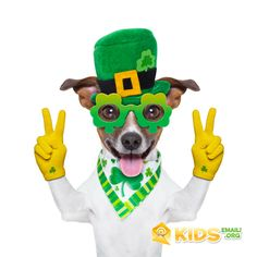 Find St Patricks Day Dog Peace Fingers stock images in HD and millions of other royalty-free stock photos, illustrations and vectors in the Shutterstock collection. Thousands of new, high-quality pictures added every day. Mermaid Costume Kids, St Patrick's Day Photos, Peace Fingers, Dog Stock Photo, Fun Easy Crafts, Dog Poster, St Pats, Photo Booth Props, Diy Party