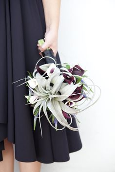 "wedding bouquet inspiration - air plant in wedding bouquet inspiration   BLUEPRINT // 1 large Air Plant // 12 ""black"" mini calla lilies // 12 ""Picasso"" mini calla lilies 12 Purple Veronica // 10 stems of Trachelium // 1 yard black satin ribbon and about 36 black headed pins"