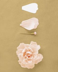 Deco - Handmade peonies!  Peony Use 35 petals (get the template below) and a button stamen. Shape petals to cup inward slightly. Pleat base of each petal; ...