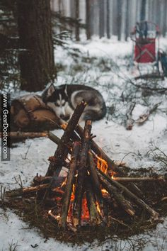 this campfire looks toasty