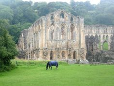 Rievaulx Abbey: Robert de Ros, 1st Baron of Hamlake brought Rievaulx Abby to the match with Isabelle de Albini, the only surving child of William de Albini IV.