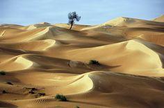 Risultati immagini per deserti Amazing Photography, Landscape Photography, Travel Photography, Snowbird Utah, Deserts Of The World, Desert Colors, Desert Dream, Short Break, Beautiful Places To Visit
