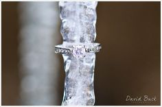 icicle ring pic :) cannot wait for our engagement pics in December!! I'm getting sooo antsy waiting for snow.