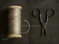 Gold Cotton and Vintage Scissors - Gold Cotton and Vintage Scissors