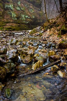 March 27th, 2014 at Parfrey's Glen State Natural Area - www.devilslakewisconsin.com