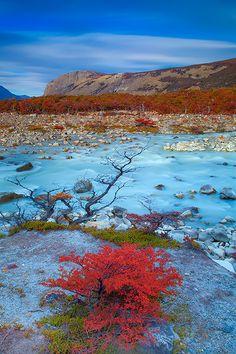 Libutron en El Chaltén, Patagonia, Argentina