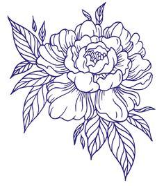 Flower Line Drawings, Outline Drawings, Art Drawings, Tattoo Outline Drawing, Lotus Drawing, Peony Drawing, Flower Pattern Drawing, Flower Sketches, Floral Drawing