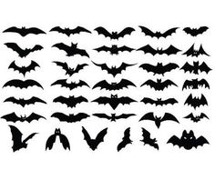 Check out Halloween Bats - Sheet of Decals for Halloween - Halloween Decorations - For Windows, Door, Pumpkins, Halloween Stickers on amberrockstar Theme Halloween, Halloween Stickers, Halloween Bats, Diy Halloween Decorations, Halloween Design, Holidays Halloween, Happy Halloween, Bat Silhouette, Halloween Silhouettes