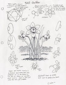 Art Ed Central loves Adron's Art Lesson Plans: How to Draw a Daffodil, a Skill Builder For The Young Artist. Daffodil Flower, Leaf Drawing, Painting & Drawing, Teen Art, Watercolor Projects, Flower Stamp, Arts Ed, Art Lesson Plans, Love