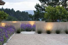 "stuccoed walls, 1/4"" crushed granite, reeds, lavender & lighting from ""Landprints: the Landscape Designs of Bernard Trainor"""