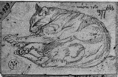 Le Chat Mimi-Roto couché Jean Auguste Ingres