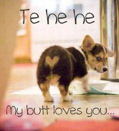Soooo! Cute!:)