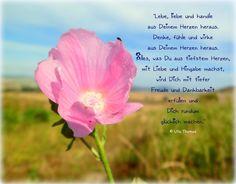Lebe, liebe und handle aus Deinem Herzen heraus... Ulla Thomas - www.botschaftenmitherz.de