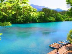 五色沼【福島県】 GoogleMap:http://goo.gl/maps/MVX9 磐梯山の北側山麓の湖沼群のうち桧原湖、小野川湖、秋元湖にはさまれて点在する大小40あまりの湖沼群を総称して五色沼と言う。 コバルト色 pic.twitter.com/hxNfO2X7ng