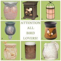 Calling all Bird Lovers!! How cute are these Scentsy Warmers!! www.teresarausch.scentsy.us