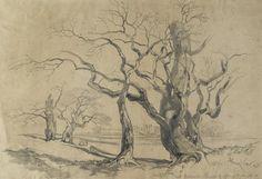 Oak Trees at Knowsley, 1839 Edward Lear