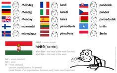 hét fő – seven people [Literally: seven heads] hétfő [ˈheːtføː] – Monday [Literally::: head of the week] #Hungarian