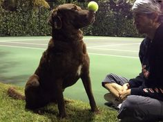 Enrique and his lovable chocolate lab Jack