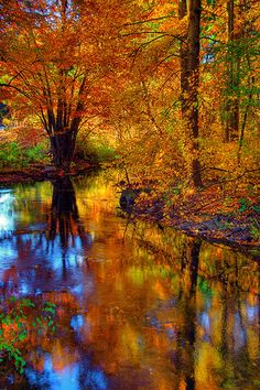 Fall foliage reflected in the West River, Guilford, CT by slack12, via Flickr