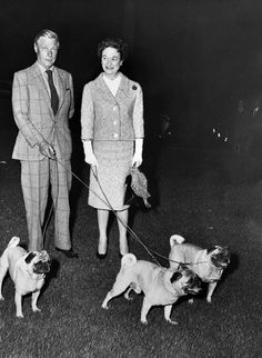 Duchess of Windsor, Wallis Simpson's Style - Page 10 Eduardo Viii, Pug Photos, Pug Pictures, Old Pug, Wallis Simpson, Cute Pugs, Funny Pugs, Cairn Terrier, Bull Terriers