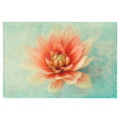 Dahlia Photograph, Coral on Mint, Soft Focus, French Country Home,... ($25) ❤ liked on Polyvore