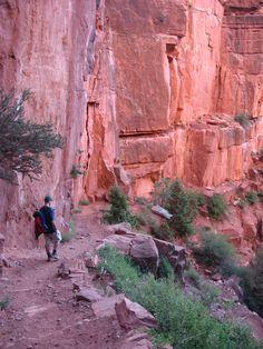 Grand-Canyon-Arizona-023.jpg (1704×2272)