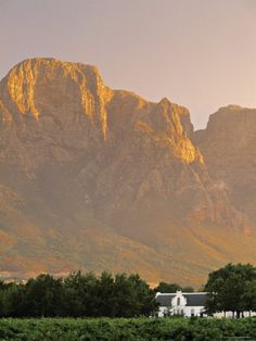 Boschendal Wine Estate, Franschoek, Cape Province, South Africa