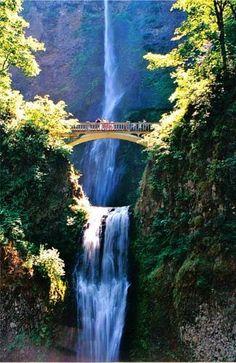 Oregon looks beautiful!