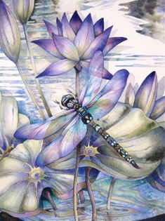 There has been a blue Dragonfly in my garden for a few days, gorgeous, but pretty territorial. When I'm out there watering, he goes right for my head.  ~~ Houston Foodlovers Book Club