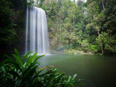 Millaa Millaa Falls Atherton Tablelands Tropical North Queensland road trip