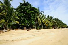 Haad Chao Phao... the beach we are located on!
