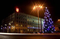 Choinka przy Urzędzie Miasta Gdyni / Christmas Tree by Gdynia City Hall | fot. Marzena Kosiak