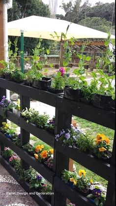 The 30 most inspiring ideas for DIY pallet garden fences to improve your outdoor space diy fences garden ideas improve inspiring outdoor pallet space # Small Garden Fence, Vertical Garden Diy, Vertical Gardens, Backyard Fences, Garden Fencing, Backyard Landscaping, Pallet Fencing, Diy Fence, Fence Ideas