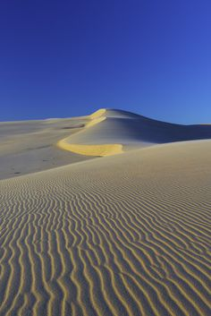 From My recent trip to the Stockton sand hills 2 hours north of Sydney Desert Biome, Desert Dream, Dark Places, Countries Of The World, Landscape Photos, Nature Photos, Beautiful Landscapes, Beautiful World, Wonders Of The World