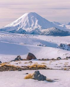 Mt Ngauruhoe, New Zealand. Check out this amazing photo by @ricardodetreend Tag #lovelynewzealand or @lovelynewzealand for a chance to be featured. #mtngauruhoeNZ #newzealand #hiking #adventures