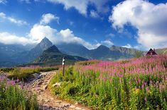 Mniej znane rekordy polskiej przyrody - Podróże Poland Tourism, Tatra Mountains, Beautiful Places In The World, Mother Earth, Where To Go, The Good Place, Cool Pictures, Nature Photography, Scenery