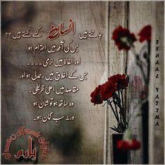 Ali Quotes, Jokes Quotes, People Quotes, Urdu Quotes, Qoutes, Quran Quotes Inspirational, Spiritual Quotes, Islamic Quotes, Bano Qudsia Quotes
