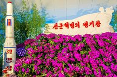 Flower Exhibition ��, Pyongyang North Korea #Pyongyang #northkorea #dprk #explore_dprk #asia #travel #instatravel #travelgram #passportready #wanderlust #ilovetravel #travelphotography #travelpics #instapassport #mytravelgram #amazing #ypt #youngpioneertours #missile #missile3 #flowers http://tipsrazzi.com/ipost/1514932232744286951/?code=BUGHtbXgzrn