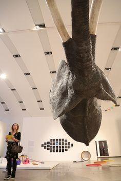 Exhibitions, My Photos, Artwork, Donkeys, Work Of Art, Auguste Rodin Artwork, Artworks, Illustrators