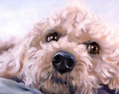 Canine Cuties, custom Pet Portrait paintings in Oils by puci, 8x8 inches