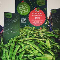 Ja pots participar al concurs de #collitsacasa amb la teva foto feta a les parades dels mercats de #mataró que formen part de la campanya de @collitsacasa  #mercats #verdures #fruita #km0 #productesdelaterra #productesdeproximitat #vegetables #fruit #markets