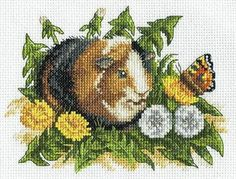 Klart Counted Cross Stitch Kit - Guinea Pig With Butterfly & Elephant Cross Stitch, Cross Stitch Baby, Cross Stitch Animals, Counted Cross Stitch Kits, Hamsters, Embroidery Kits, Cross Stitch Embroidery, Cross Stitches, Baby Guinea Pigs